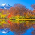 写真: 善神沼 紅葉と鳥海