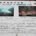 Photos: 千本木地区の終焉