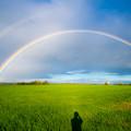虹とシルエット