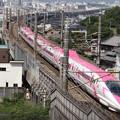 Photos: キティ新幹線