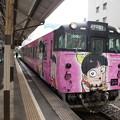 Photos: 猫娘