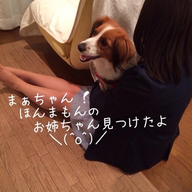写真: image