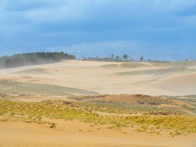 鳥取砂丘の砂嵐