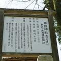 内海町 (3)