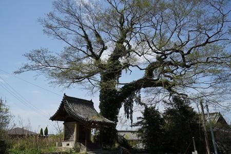 内海町 (5)