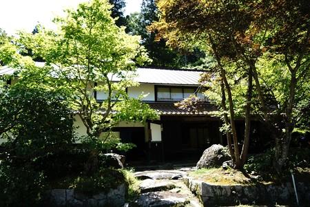 鳥取県日南町 (14)
