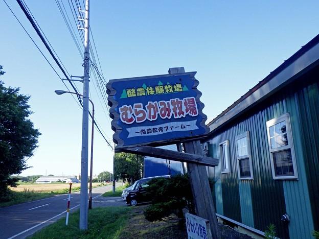 写真: 2018080627