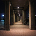 Photos: 横浜 IMG_3463