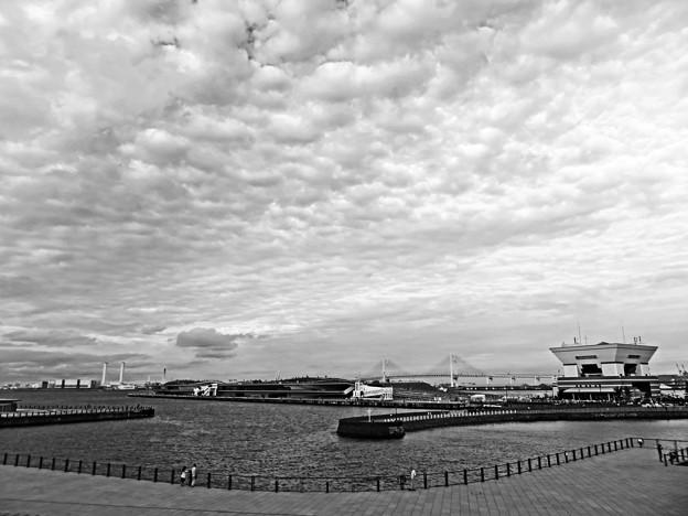 横浜 Yokohama, Kanagawa IMG_2786