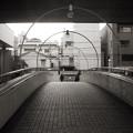 Photos: 横浜 IMG_5213