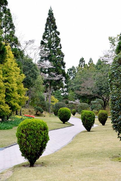 庭園内散策