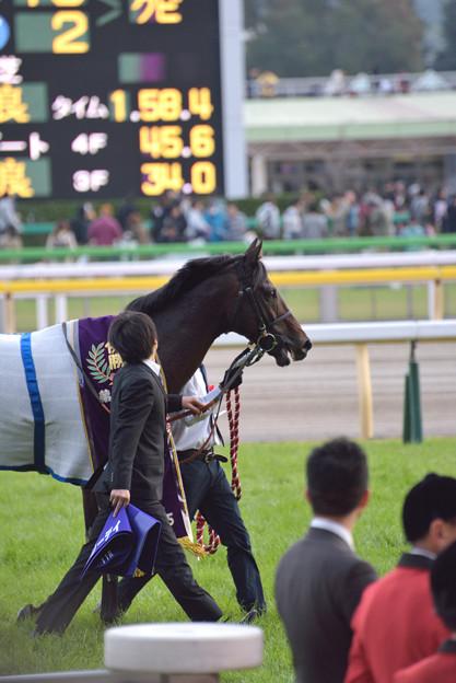 第152回天皇賞馬 ラブリーデイ号