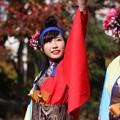 写真: おどるんや秋2017 楽舞和09