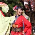 写真: おどるんや秋2017 楽舞和10