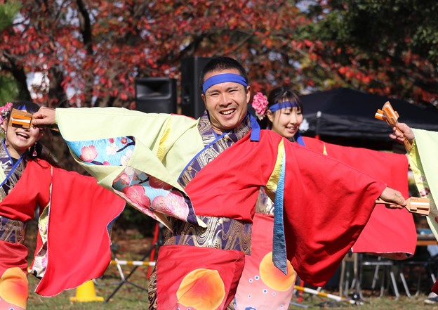 Photos: おどるんや秋2017 楽舞和11