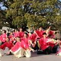 のつきみ祭2017 志舞踊11