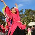 のつきみ祭2017 志舞踊13