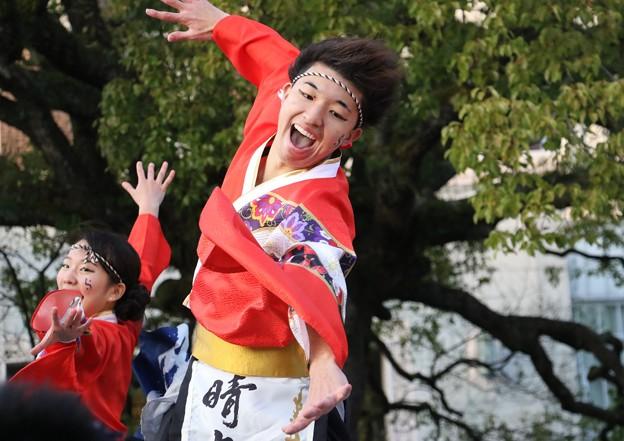 のつきみ祭2017 おどりっつ14