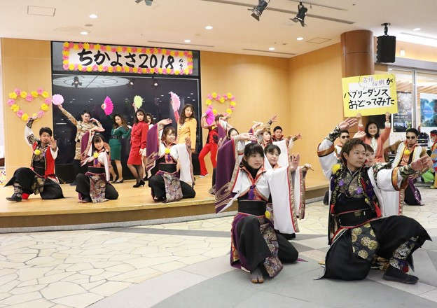 ちかよさ2018 吉祥桜樹22
