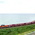 写真: 山陰迂回貨物列車