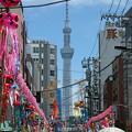 Photos: 七夕まつり