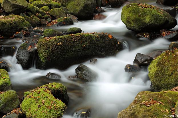 晩秋の渓流2