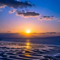 豊饒(ほうじょう)の海に映える