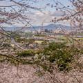 遥拝神社からの眺望