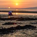 写真: 干潟と夕陽