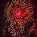 写真: 水俣(湯の児)の花火