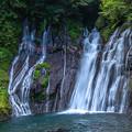 写真: 白水(しらみず)の滝