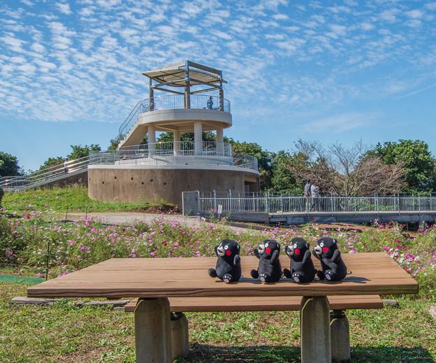 Photos: 中尾山