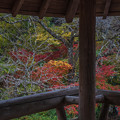 Photos: 猿飛千壺峡にて