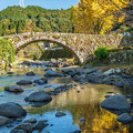 写真: 石橋と銀杏
