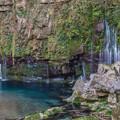 写真: 雄川の滝2