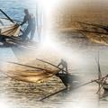 シロウオ漁_collage