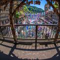 Photos: 紅葉橋からの眺望