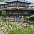 Photos: 松浜軒