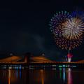 Photos: 月夜と花火