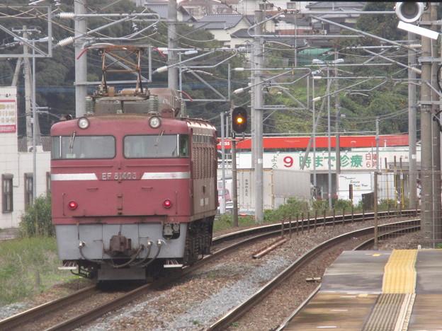 Photos: EF 81  403機関車走行