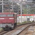 EF 81  403機関車走行