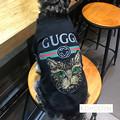 Photos: グッチ ペット tシャツ Gucci 犬服