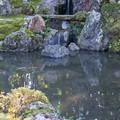 Photos: 立派な庭の池