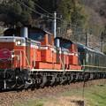 Photos: 9036レ DD51 1186+DD51 1179+24系 8両