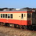Photos: 64D いすみ鉄道キハ20-1303