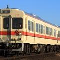 Photos: 1046レ 関東鉄道キハ310形315F 2両