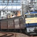 Photos: 回9842レ EF65 501+旧型客車 5両