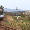 9136D のと鉄道NT200形NT204