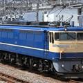 写真: 単9790レ EF65 501