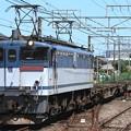 Photos: 配8791レ EF65 2083+コキ